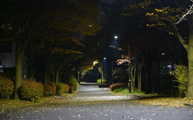 """オトナ女子が走り始めるのなら""""夜ラン""""がイイ!【体験談】"""
